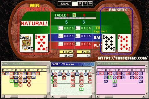 Roulette and Baccarat Software